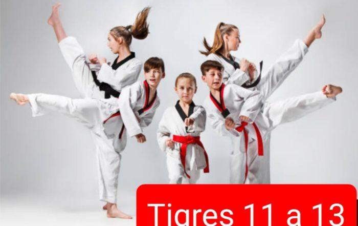 Tigres de 11 a 13