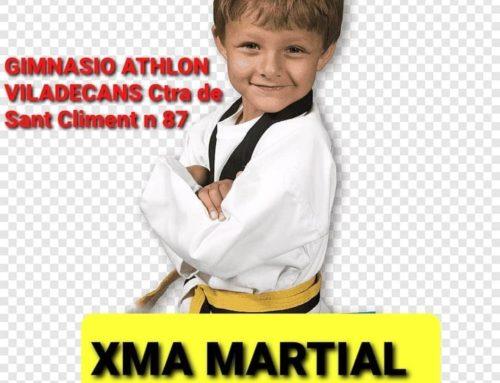 Artes Marciales Infantil (2 años-12 años)