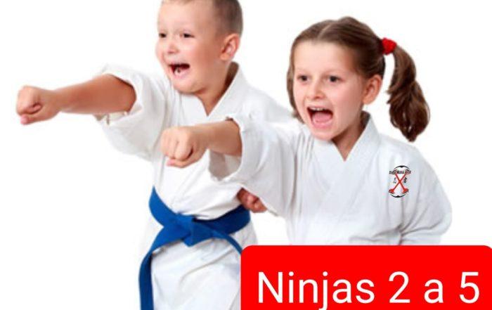 ninjas de 2 a 5